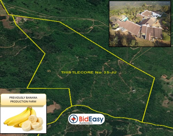 40Ha Farm with 30Ha Water Rights - Kiepersol District, Mpumalanga